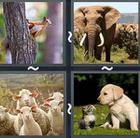 4 Pics 1 Word answers and cheats level 2528