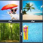 4 Pics 1 Word answers and cheats level 2529