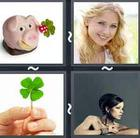 4 Pics 1 Word answers and cheats level 2531