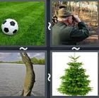 4 Pics 1 Word answers and cheats level 2549