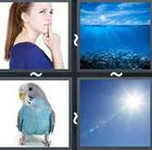 4 Pics 1 Word answers and cheats level 2562