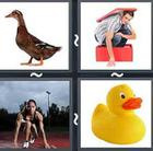 4 Pics 1 Word answers and cheats level 2577