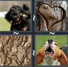 4 Pics 1 Word answers and cheats level 2599