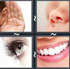 4 Pics 1 Word answers and cheats level 2611