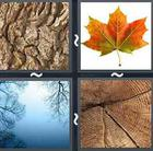 4 Pics 1 Word answers and cheats level 2627