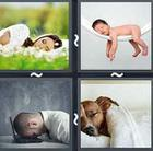 4 Pics 1 Word answers and cheats level 2658