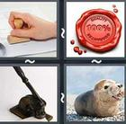 4 Pics 1 Word answers and cheats level 2723