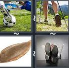 4 Pics 1 Word answers and cheats level 2738