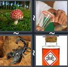 4 Pics 1 Word answers and cheats level 2740