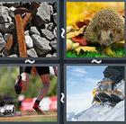 4 Pics 1 Word answers and cheats level 2763