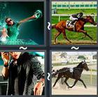 4 Pics 1 Word answers and cheats level 2805