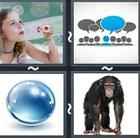 4 Pics 1 Word answers and cheats level 2841