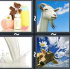 4 Pics 1 Word answers and cheats level 2883