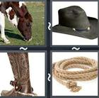4 Pics 1 Word answers and cheats level 2910