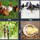 4 Pics 1 Word answers and cheats level 2920