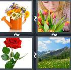 4 Pics 1 Word answers and cheats level 2934