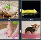 4 Pics 1 Word answers and cheats level 2959