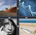 4 Pics 1 Word answers and cheats level 302