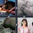 4 Pics 1 Word answers and cheats level 311