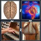 4 Pics 1 Word answers and cheats level 3133