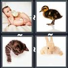 4 Pics 1 Word answers and cheats level 3267