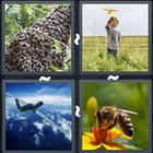 4 Pics 1 Word answers and cheats level 3324