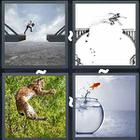 4 Pics 1 Word answers and cheats level 3353