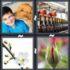4 Pics 1 Word answers and cheats level 3433