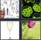 4 Pics 1 Word answers and cheats level 3450
