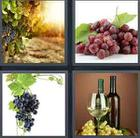 4 Pics 1 Word answers and cheats level 3475
