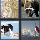 4 Pics 1 Word answers and cheats level 3513