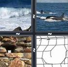 4 Pics 1 Word answers and cheats level 404