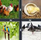 4 Pics 1 Word answers and cheats level 511