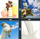 4 Pics 1 Word answers and cheats level 517