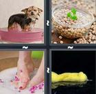 4 Pics 1 Word answers and cheats level 538