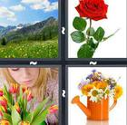 4 Pics 1 Word answers and cheats level 562