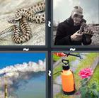 4 Pics 1 Word answers and cheats level 627