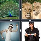 4 Pics 1 Word answers and cheats level 634