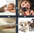 4 Pics 1 Word answers and cheats level 671