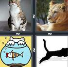 4 Pics 1 Word answers and cheats level 698