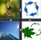 4 Pics 1 Word answers and cheats level 739
