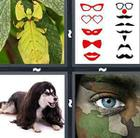 4 Pics 1 Word answers and cheats level 777