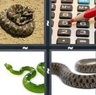 4 Pics 1 Word answers and cheats level 862