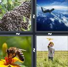 4 Pics 1 Word answers and cheats level 907