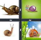 4 Pics 1 Word answers and cheats level 926